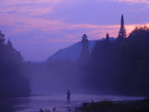A angler at dusk in the camp rapids