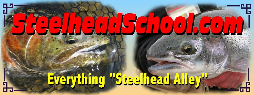 Pennsylvania ohio oh steelhead guide service guided trout for Best trout fishing in pa